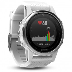 Garmin Fenix5S Silver Optic...